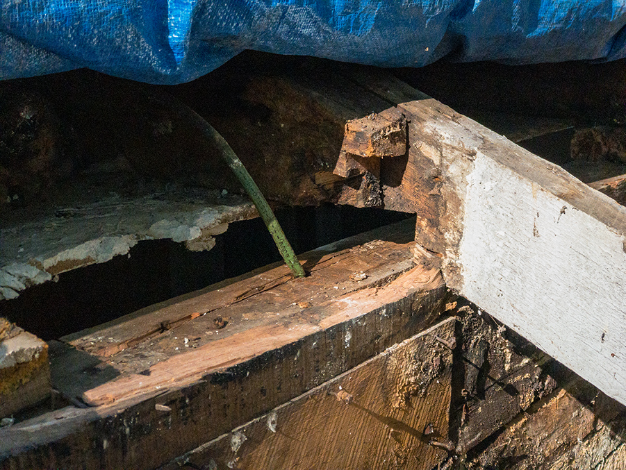 Wall Demo - Wood Rot