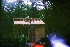 New Shed - Roof Sheathing